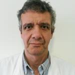 <center>Alfredo Luís Couto</center>